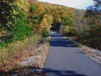 The Sandy Creek Trail