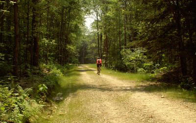 Two Mile Run Mountain Bike Trails